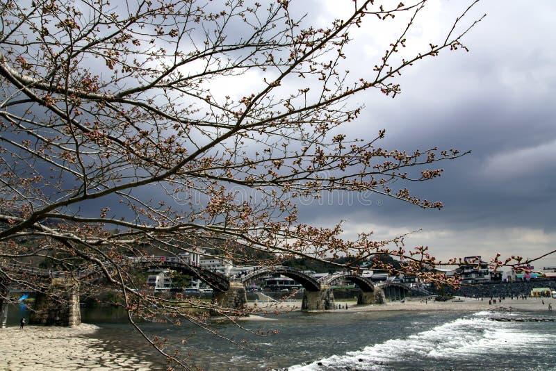 Kintaibrug in Iwakuni stock afbeeldingen