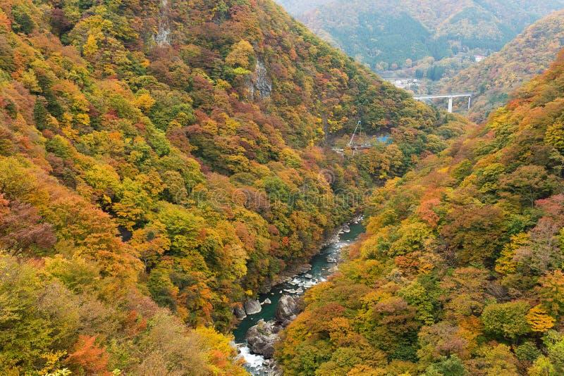 Kinugawa im Herbst lizenzfreie stockbilder