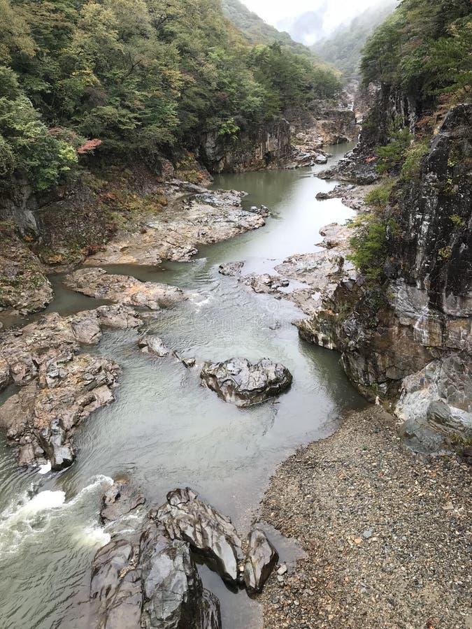 Kinugawa Ryuokyo dolina w Japonia obrazy stock