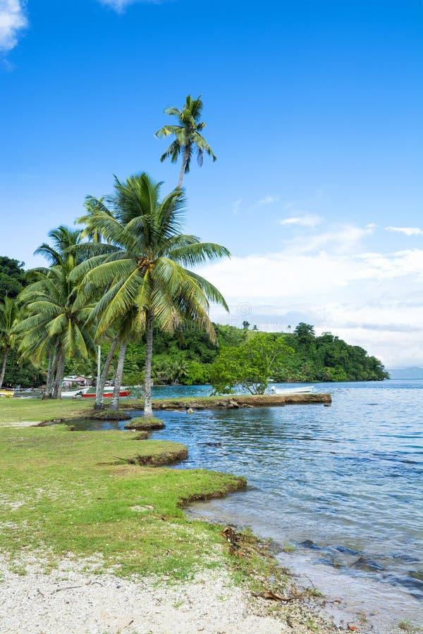 Kioaeiland Fiji stock foto's