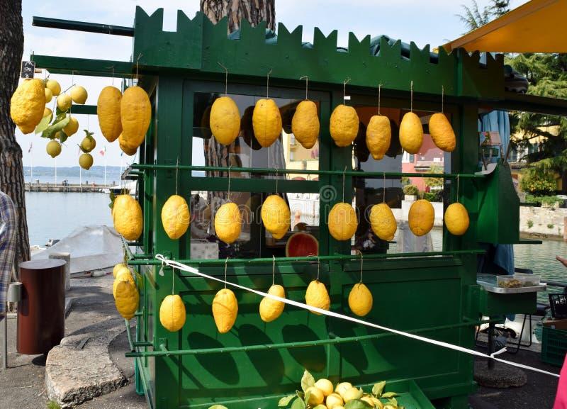 Kiosque avec des cèdres et des citrons à vendre images libres de droits