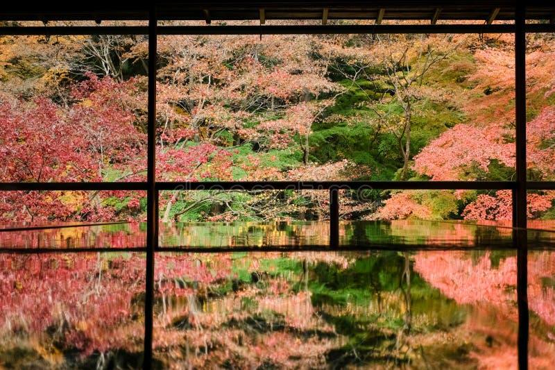 Kioto Jesienne liście Rurikoin zdjęcie royalty free