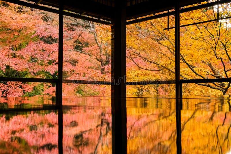 Kioto Jesienne liście Rurikoin zdjęcia stock