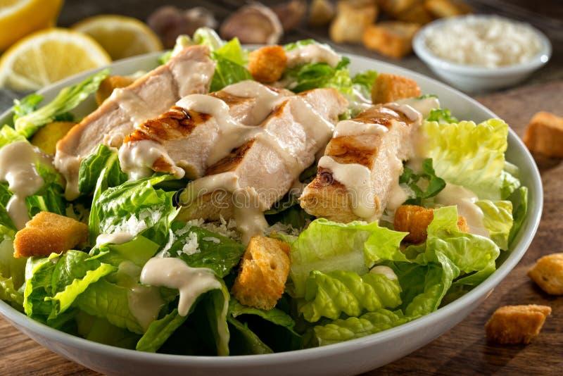 Kip Caesar Salad stock afbeelding