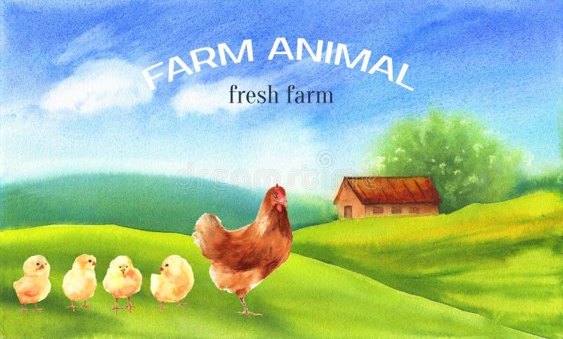 Kip en kuikens op het dorpslandschap De dierenwaterverf van het affichelandbouwbedrijf stock foto