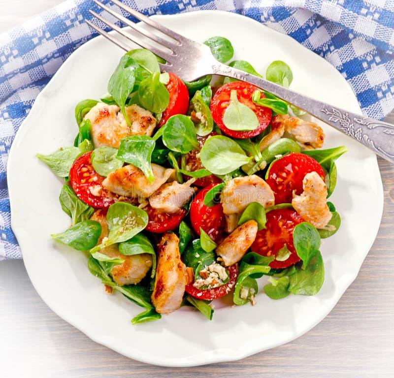 Kip en Plantaardige Salade royalty-vrije stock afbeeldingen