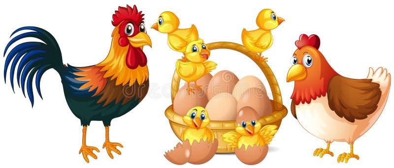 Kippen en kleine kuikens met mand van eieren vector illustratie
