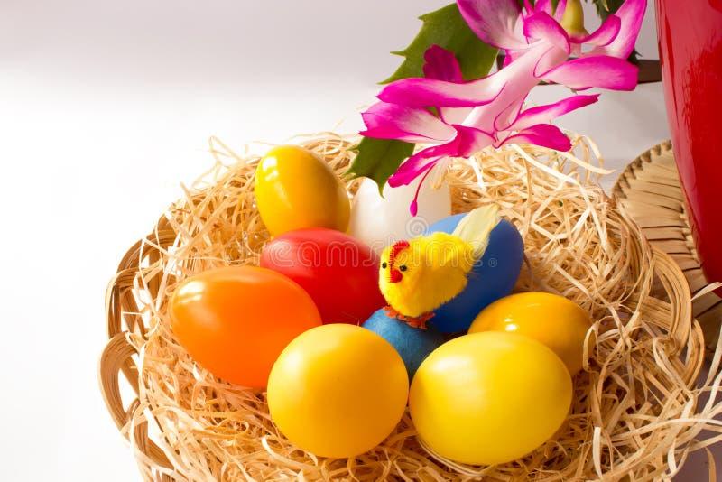 Kippen kleurrijke eieren en Pasen-cactus stock foto