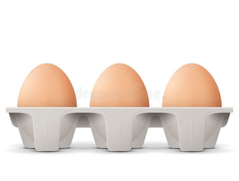 Kippeneieren in de doos van het kartonei op witte achtergrond wordt geïsoleerd die royalty-vrije illustratie