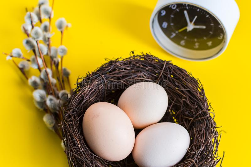 Kippeneieren in een nest met een wilgentakje en een wekker op een gele achtergrond royalty-vrije stock afbeelding