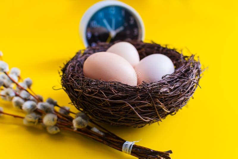 Kippeneieren in een nest met een wilgentakje en een wekker op een gele achtergrond royalty-vrije stock fotografie