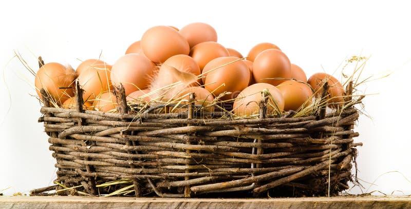 Kippeneieren in geïsoleerde mand. Natuurvoeding royalty-vrije stock fotografie