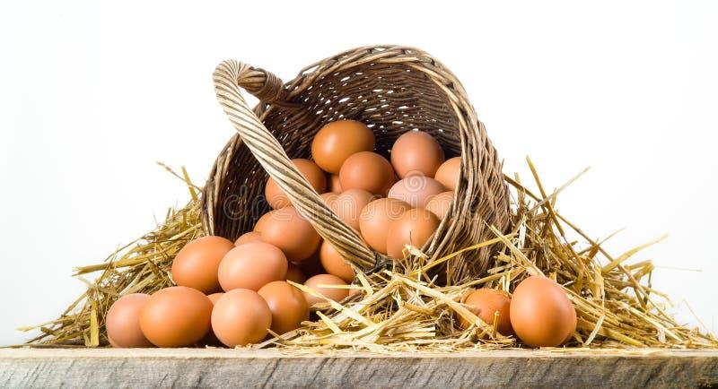 Kippeneieren in geïsoleerde mand. Natuurvoeding stock afbeeldingen