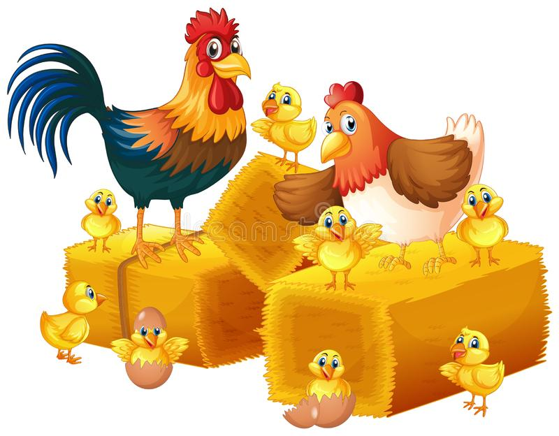 Kippenfamilie op witte achtergrond royalty-vrije illustratie