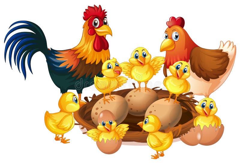 Kippenfamilie op witte achtergrond stock illustratie