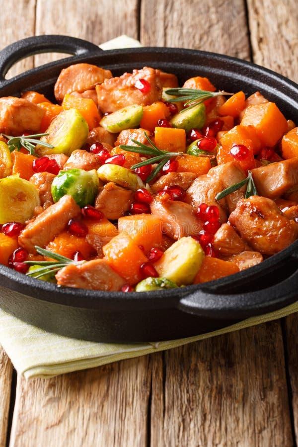 Kippenhutspot met groenten en kruiden in cl van de granaatappelsaus royalty-vrije stock fotografie