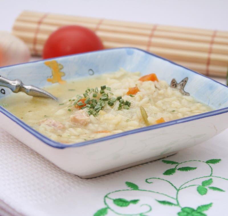 Kippensoep met rijst stock afbeelding
