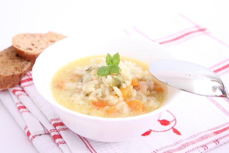 Kippensoep met rijst royalty-vrije stock afbeelding