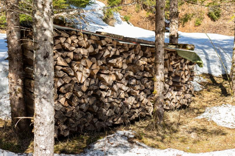 Kirchberg in Tirol, Tirol/Austria - March 24 2019: Big stack of fire wood in the forest and snow royalty free stock photography