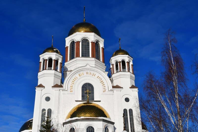 Kirche auf Blut zu Ehren aller Heiligen glänzend im russischen Land – lizenzfreie stockfotografie