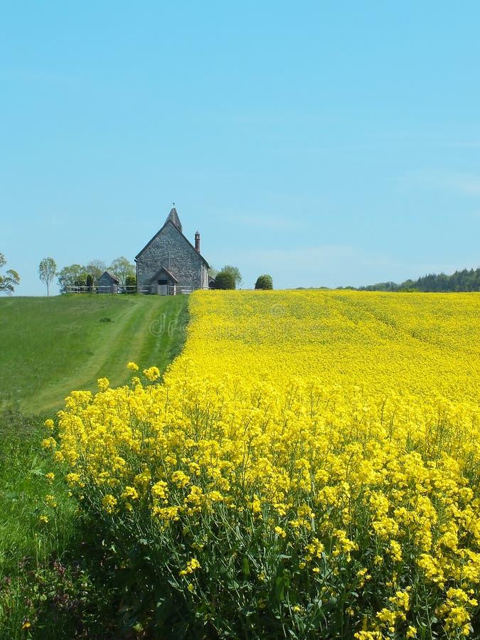 Kirche auf einem Gebiet stockfoto