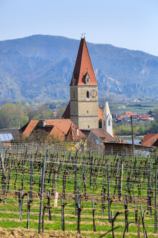 Kirche der Annahme von Jungfrau Maria mit Weinbergen im Vordergrund Weissenkirchen im der Wachau, Niederösterreich lizenzfreie stockbilder