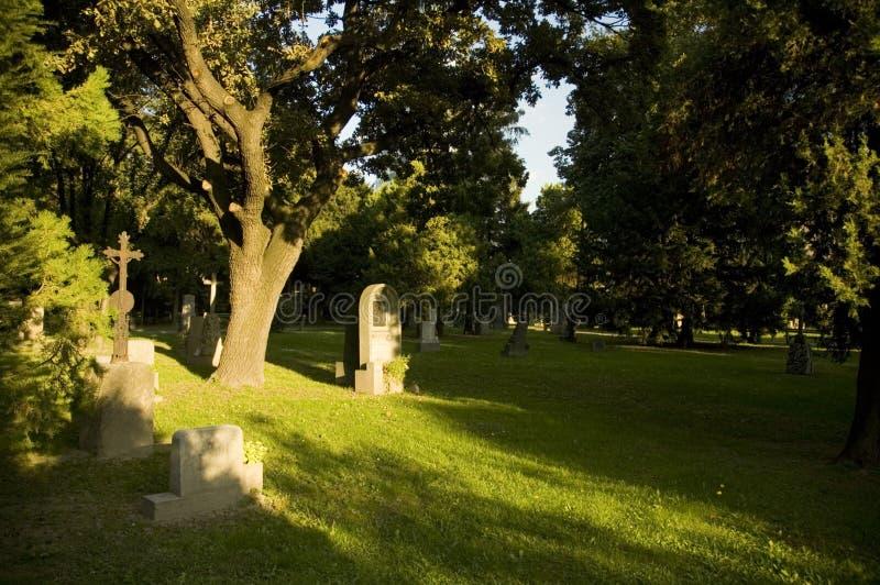 Kirchhof mit frischen grünen Bäumen stockbild