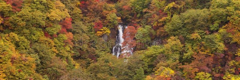 Kirifuri valt dichtbij Nikko, Japan in de herfst royalty-vrije stock fotografie