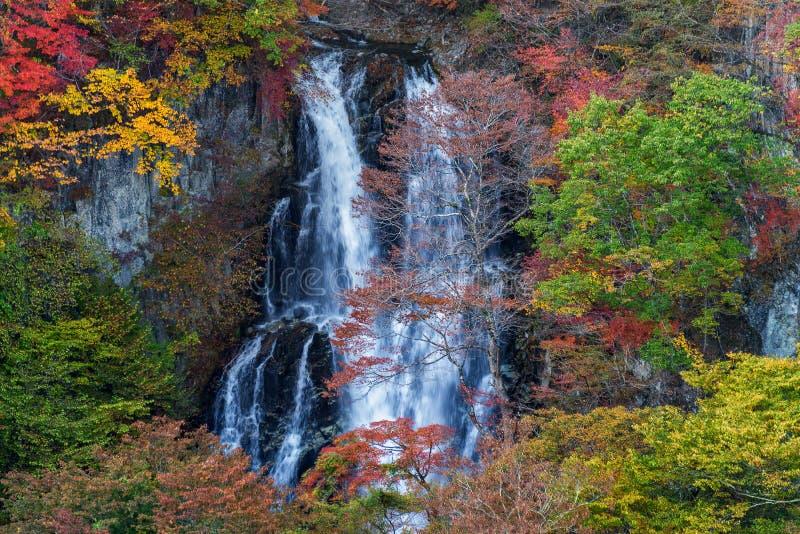 Kirifuri-Wasserfall in der schönen Herbstsaison lizenzfreies stockbild