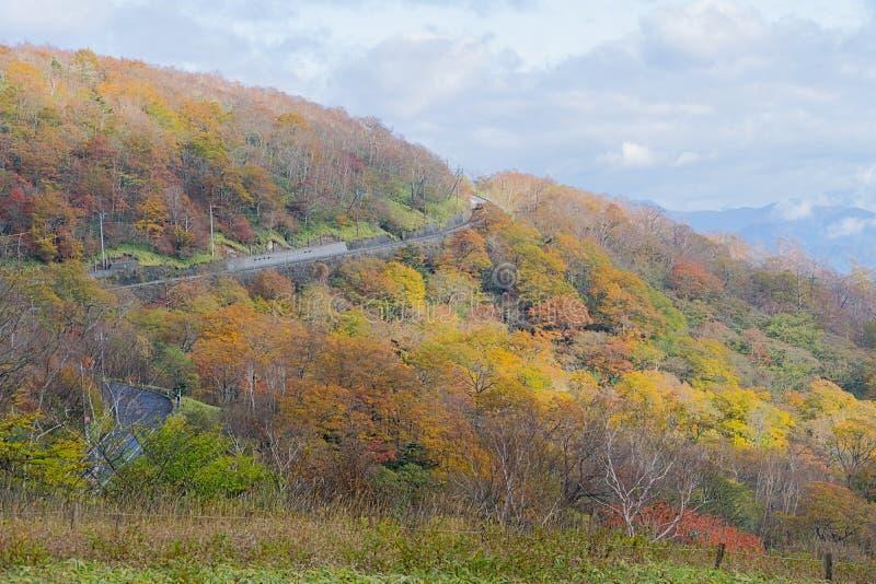 Kirifurihooglanden in de herfst in Nikko, Japan stock foto's