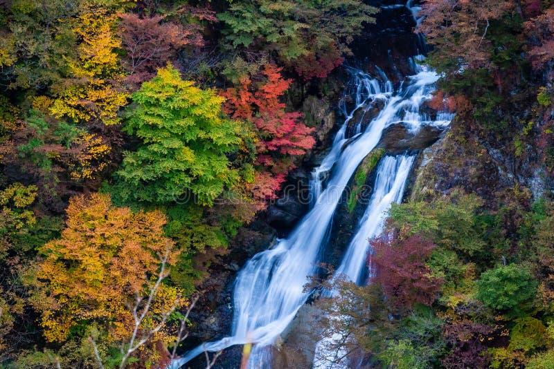 Kirifuriwatervallen en Mooie romantische esdoornbladeren royalty-vrije stock fotografie