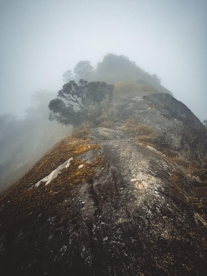 Kirigalpotta, de 2de Hoogste Berg van Sri Lanka stock foto