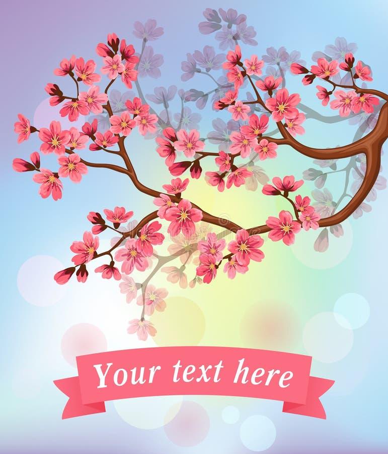 Kirschblüte-Blüten und -band vektor abbildung
