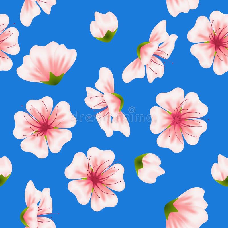 Kirschblüte-Blaumuster des Vektors nahtloses stock abbildung