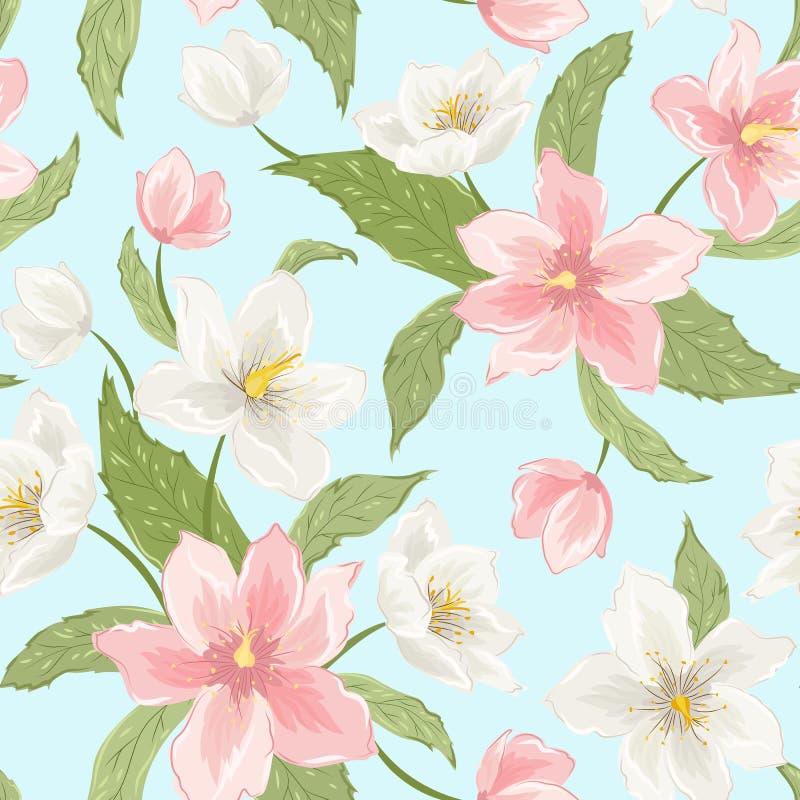 Kirschblüte-Magnolie Hellebore blüht nahtloses Muster stock abbildung