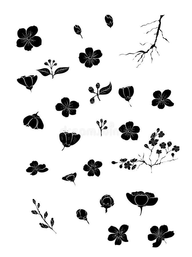 Kirschblüte mit Niederlassung rosa Kirschblüte-Vektorse stock abbildung