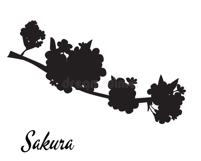 Kirschblüte-Schattenbildvektorillustration Kirschblüte-Niederlassung in der Blüte stock abbildung