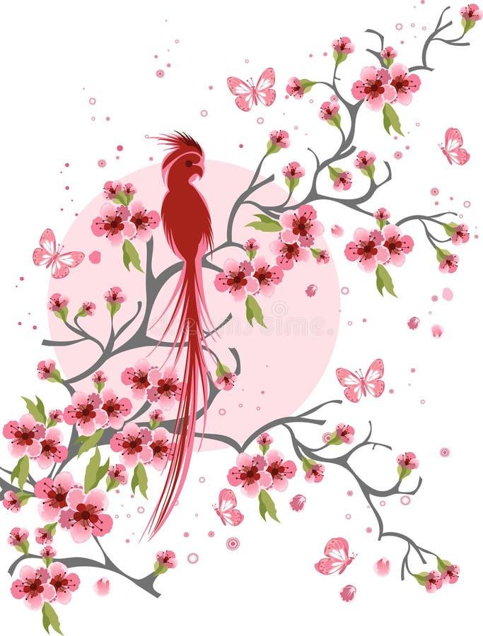 Kirschblüte und -vogel lizenzfreie abbildung