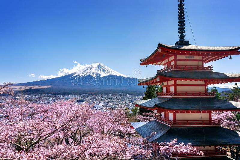 Kirschblüten im Frühjahr, Chureito-Pagode und Fuji-Berg in Japan stockbilder