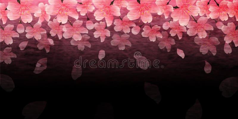 Kirschblütenillustration vektor abbildung