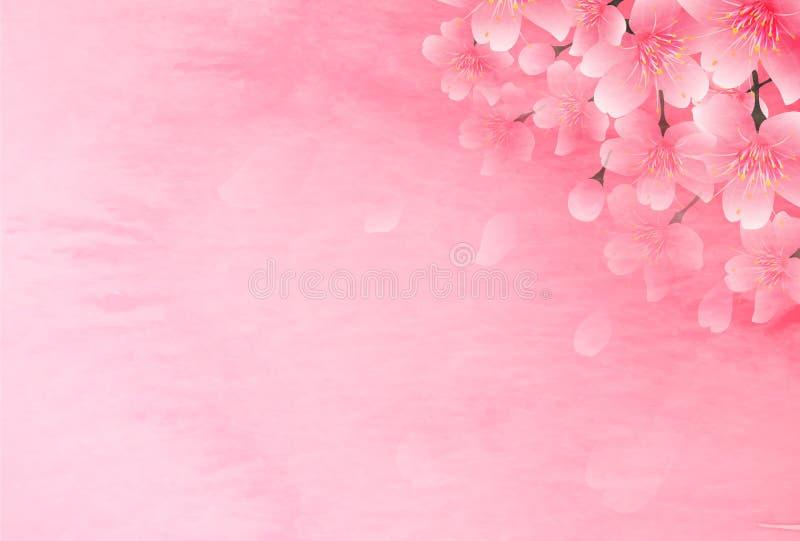 Kirschblütenillustration stock abbildung