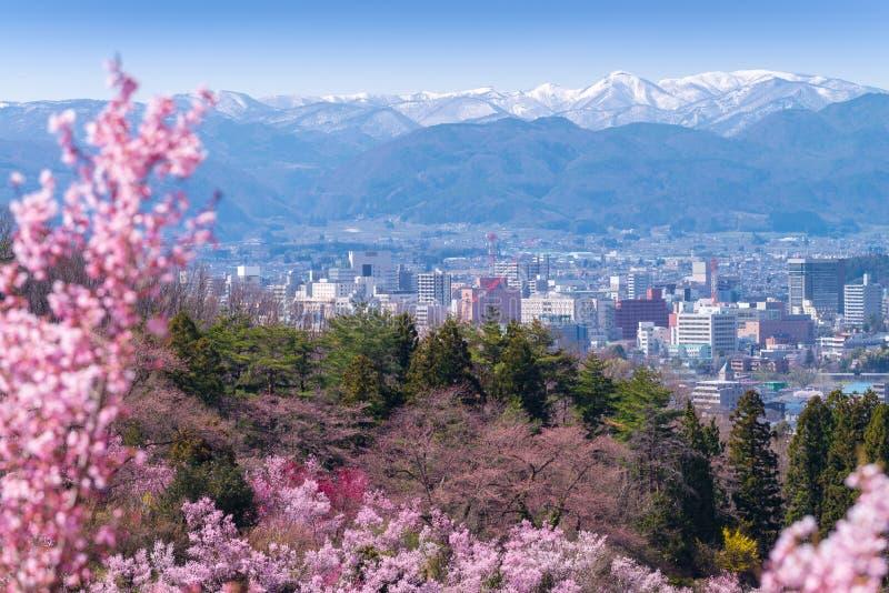 Kirsche-Blütenbäume u. x28; Sakura& x29; und viele Blumensorten in Hanam lizenzfreies stockfoto