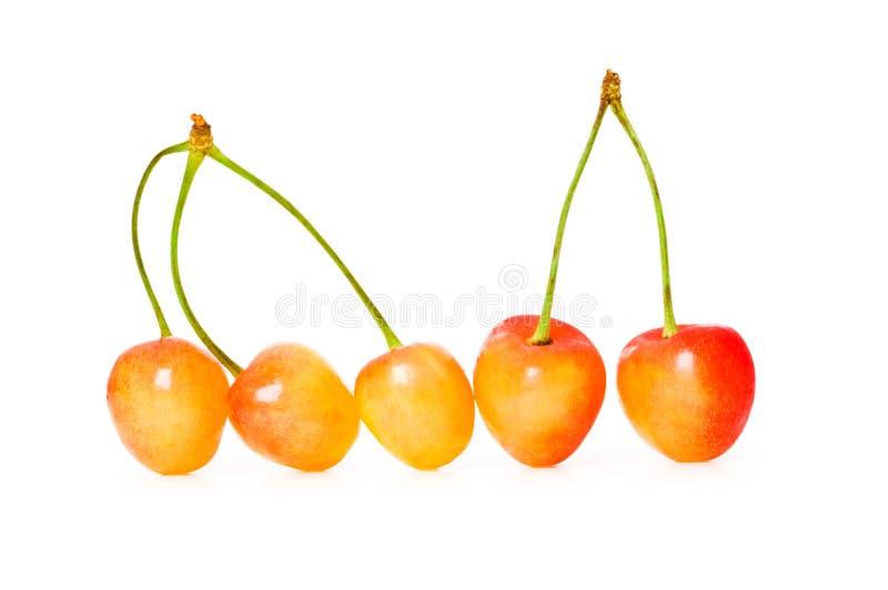 Kirschen getrennt stockfoto