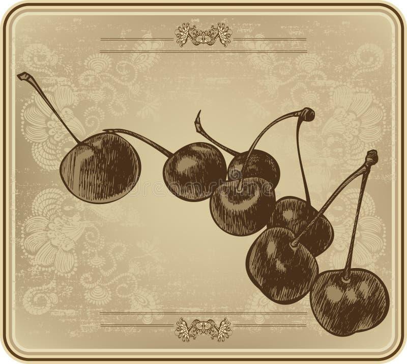 Kirschen mit Weinleserahmen, Handzeichnung Auch im corel abgehobenen Betrag lizenzfreie abbildung