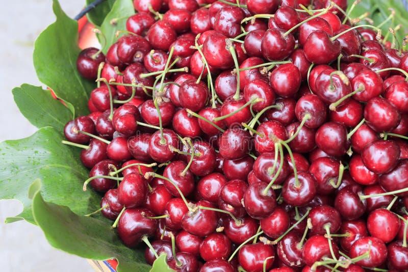 Kirschfrüchte mit Blättern stockfotos