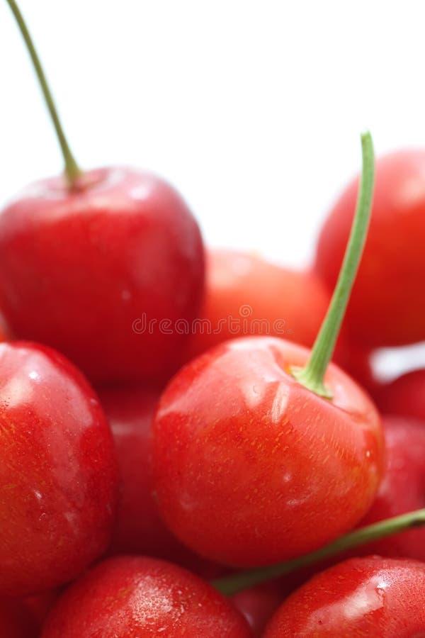 Kirschfrüchte mit Blättern stockfotografie