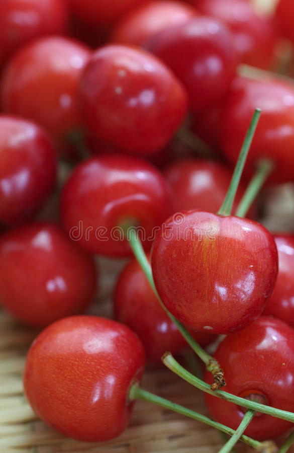 Kirschfrüchte mit Blättern lizenzfreie stockbilder