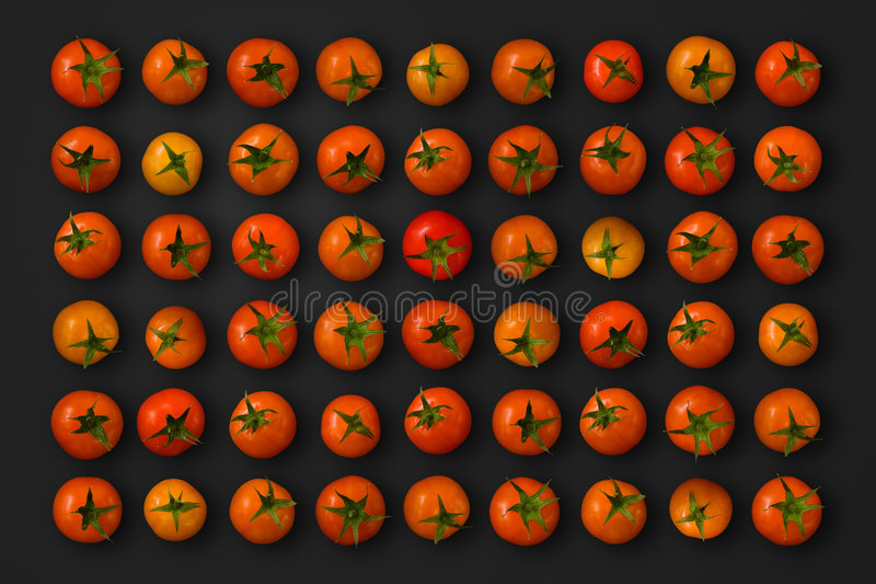 Kirschtomaten stockbild