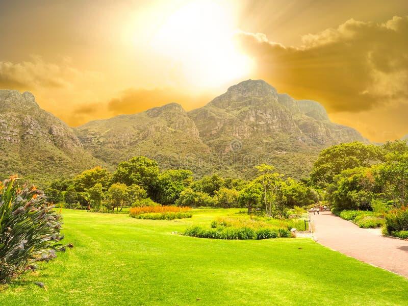 Kirstenbosch nationaler botanischer Garten lizenzfreies stockfoto