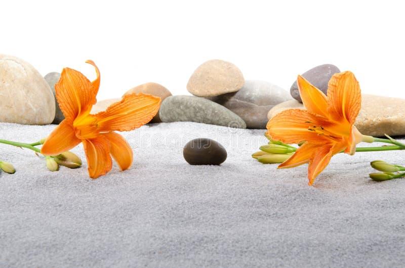 Kiselstenstenar och den orange liljan blommar på grå färgsand arkivbilder